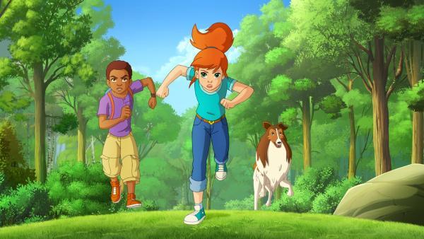 Harvey, Zoe und Lassie versuchen die Touristenscharen davon abzuhalten, direkt auf die Wiese zu steuern. | Rechte: ZDF/Classic Media/DC Entertainment/Superprod