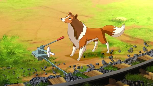 Dank Lassie kann eine Katastrophe verhindert werden. | Rechte: ZDF/Classic Media/DC Entertainment/Superprod