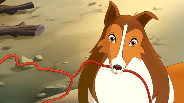 In letzter Sekunde kann Lassie die Sprengung des Damms verhindern. | Rechte: ZDF/Classic Media/DC Entertainment/Superprod