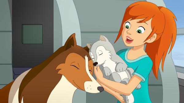 Auch Hündin Lassie hat den kleinen Wolf, den Zoe im Wald entdeckt hat, ins Herz geschlossen. | Rechte: ZDF/Classic Media/DC Entertainment/Superprod