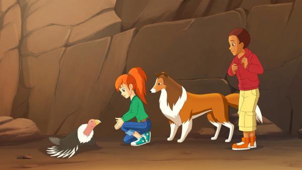 Zoe (li.), Lassie und Harvey (re.) haben einen verletzten Kondor entdeckt.  | Rechte: ZDF/Classic Media/DC Entertainment/Superprod