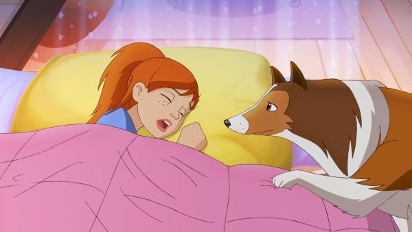 Lassie versucht  Zoe zu wecken um sie auf das Verschwinden von Harvey aufmerksam zu machen.  | Rechte: ZDF/Classic Media/DC Entertainment/Superprod