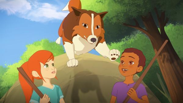 Mit einem beherzten Satz kommt Lassie Zoé und Harvey zu Hilfe, die den Wolf verscheuchen wollen.   Rechte: ZDF/Superprod/ZDFE