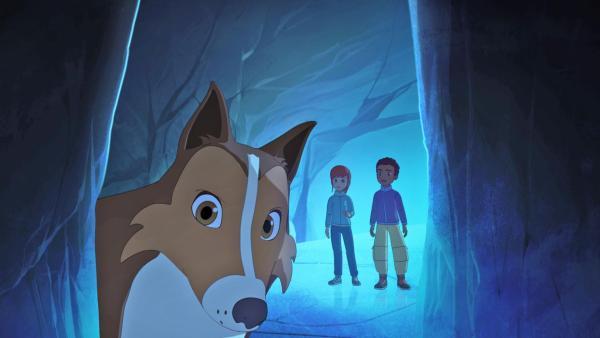 Lassie ist im Vordergrund zu sehen, während Harvey und Zoé weiter hinten stehen. Sie befinden sich in einer Eishöhle. | Rechte:  Superprod, ZDF, ZDFE