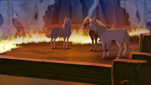 Das Feuer wüted und die Pferde sind noch immer eingesperrt und können nicht fliehen. | Rechte: hr/Télé Images