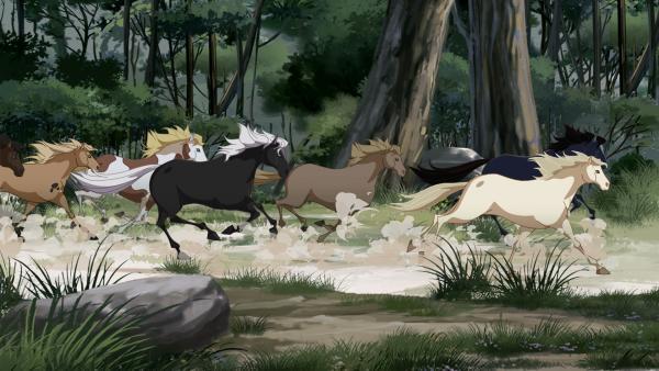 Mistral trifft eine wilde, rossige Stute und schließt sich ihrer Herde an.   Rechte: hr/Tele Images