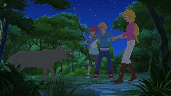 Ein Wolf bedroht die Freunde.   Rechte: hr/Tele Images