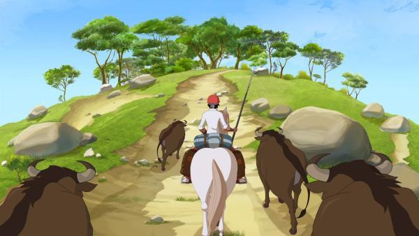 Angelo bekommt seinen ersten Auftrag als Viehhüter. Er soll eine Stierherde zu einem etwa zwei Tage entfernen Dorf treiben.   Rechte: hr/Tele Images