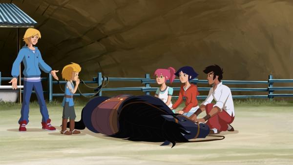 Als Mistral wegen Kevin stürzt und sich verletzt, schimpfen die Freunde mit ihm. | Rechte: hr/Tele Images