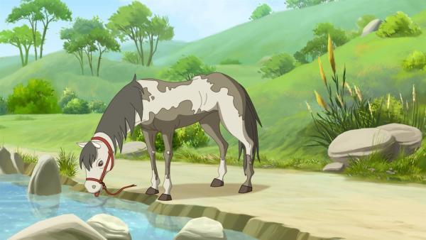 Lena und Angelo finden ein altes, ungepflegtes Pony, das entweder ausgesetzt wurde oder weggelaufen ist. | Rechte: hr/Tele Images