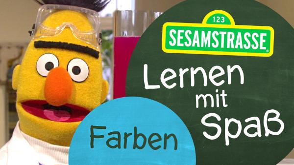 """Bert steht in einem Labor und trägt eine Sicherheitsbrille und Kittel, neben ihm auf einem Schild steht: """"Sesamstraße: Lernen mit Spaß - Farben"""".   Rechte: NDR"""
