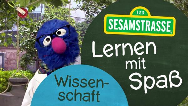 """Groby mit einem Kittel und dicker Brille steht neben einem Schild auf dem steht: """"Sesamstraße: Lernen mit Spaß - Wissenschaft"""".   Rechte: NDR"""