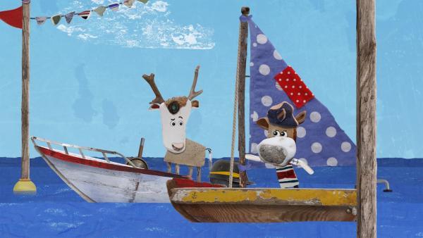 Salty findet es sehr unfair, dass Lord von Hirsch mit einem Motorboot an der Regatta teilnehmen will. | Rechte: KiKA/Sixteen South
