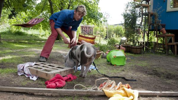 In Fritz Fuchs' (Guido Hammesfahr) Garten hat sich ein Schweinchen verirrt  - und heftiges Chaos angerichtet. | Rechte: ZDF/Antje Dittmann