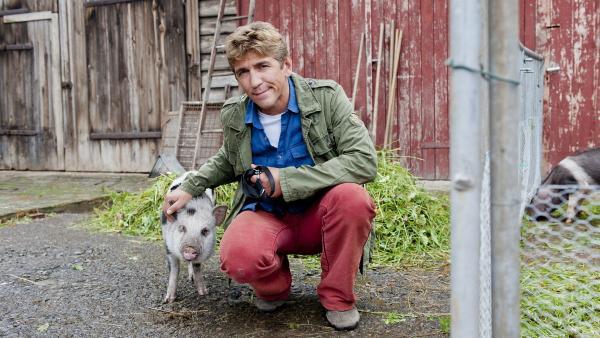 Fritz Fuchs' (Guido Hammesfahr) hat mit dem Schweinchen Freundschaft geschlossen. Aber wo es hingehört, weiß er immer noch nicht. | Rechte: ZDF/Antje Dittmann