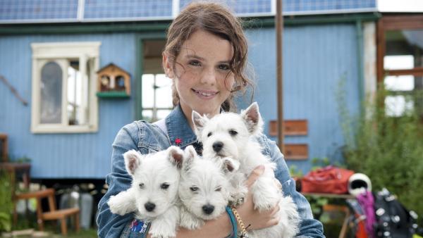 Laila (Ruby O. Fee) und die drei geretteten Hundewelpen   Rechte: ZDF/Stephan Rabold