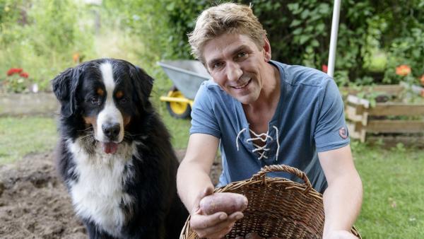 Fritz Fuchs (Guido Hammesfahr) und Hund Keks sind begeistert: Die Kartoffelernte fiel hervorragend aus. | Rechte: ZDF/Antje Dittmann