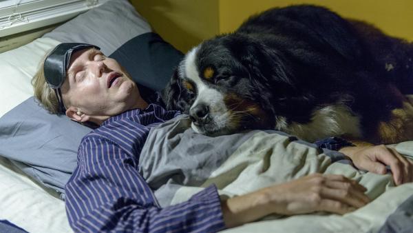 Das wird ein böses Erwachen für Herrn Kluthe (Holger Handtke), wo er doch doch keine Hunde mag und schon gar keine Hundehaare an seinen Sachen. | Rechte: ZDF/Antje Dittmann