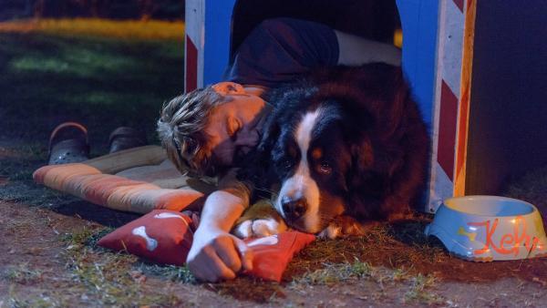 Endlich schlafen, bei seinem besten Kumpel Keks findet Fritz (Guido Hammesfahr) Ruhe vor Herrn Kluthe. | Rechte: ZDF/Antje Dittmann