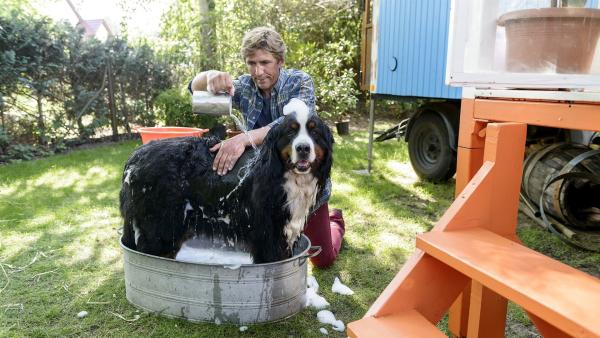 Jetzt muss die Spezial-Hundeseife ran: Hund Keks hat sich in Dung gewälzt, Fritz Fuchs (Guido Hammesfahr) bereitet ihm ein schönes Bad. | Rechte: ZDF/Antje Dittmann