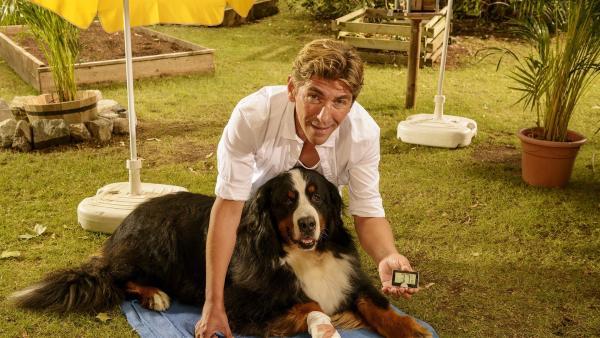 Über 37 Grad, es ist brüllend heiß. Fritz Fuchs (Guido Hammesfahr) muss sich für seinen verletzten Hund Keks eine Kühlmethode ausdenken. | Rechte: ZDF/Antje Dittmann