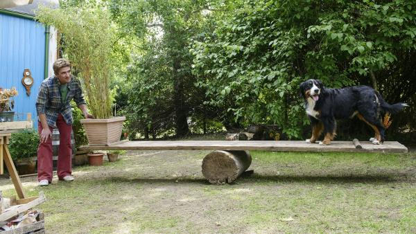 Wie riesig muss ein Hebel sein, um den Bauwagen anzuheben? Fritz Fuchs (Guido Hammesfahr) erprobt mit Hund Keks mittels einer Wippe die Hebelwirkung.   Rechte: ZDF/Antje Dittmann