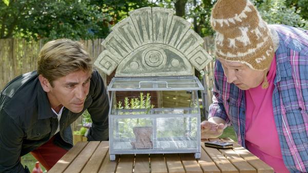Was erzählt Herr Paschulke (Helmut Krauss, r.) da? Er habe eine aztekische Wunderpflanze erworben? Fritz Fuchs (Guido Hammesfahr, l.) ist skeptisch. | Rechte: ZDF/Antje Dittmann