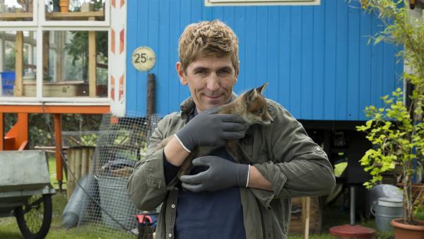 Der kleine Fuchs hat bei Fritz Fuchs (Guido Hammesfahr) Unterschlupf gefunden. Die Auffangstation für kleine Tiere wurde geschlossen. Klar, dass Fritz aushilft.   Rechte: ZDF/Ole Schwarz