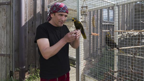 Hier wollte der Papagei also hin. Fritz Fuchs (Guido Hammesfahr) ist ihm quer über die Felder gefolgt. | Rechte: ZDF/Ole Schwarz