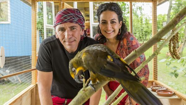 Fritz Fuchs (Guido Hammesfahr) und Yasemin (Sanam Afrashteh) freuen sich. Die neu gebaute Voliere scheint auch dem zugeflogenen Papagei zu gefallen. | Rechte: ZDF/Ole Schwarz