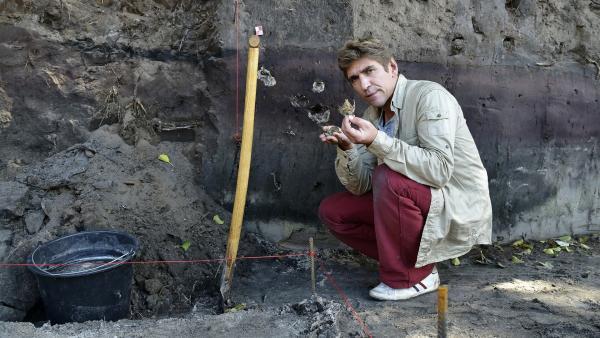 Fritz Fuchs (Guido Hammesfahr) ist bei der Grabung einem uralten Geheimnis auf der Spur. | Rechte: ZDF/Antje Dittmann