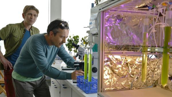 Bei der Suche nach der Superpflanze für seinen verwilderten Garten trifft Fritz Fuchs (Guido Hammesfahr, l.) auf einen Freund (Harald Schrott, r.), der an Algen forscht.   Rechte: KiKA/Bildredaktion