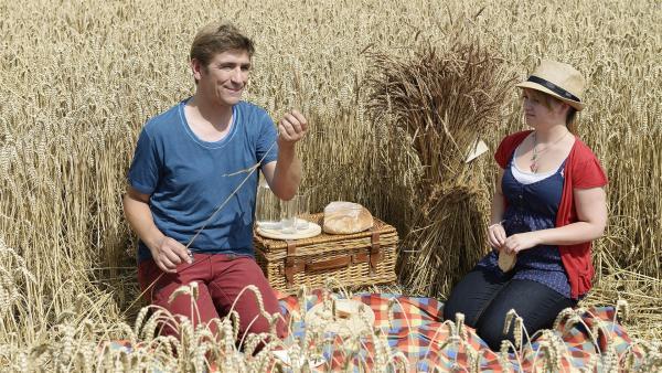 Fritz (Guido Hammesfahr) und Charlie (Géraldine Raths) sind begeistert von dem schönen Picknick. Doch wer hat es für sie arrangiert - hier mitten im Kornfeld? | Rechte: ZDF/Antje Dittmann