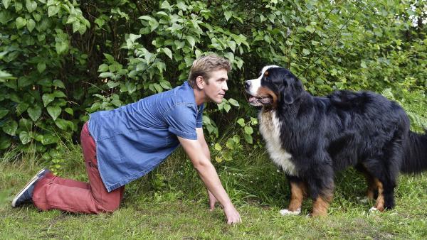 Fritz Fuchs (Guido Hammesfahr) und Hund Keks machen sich auf die Suche mach dem ausgerissenen Goldhamster. | Rechte: ZDF/Antje Dittmann