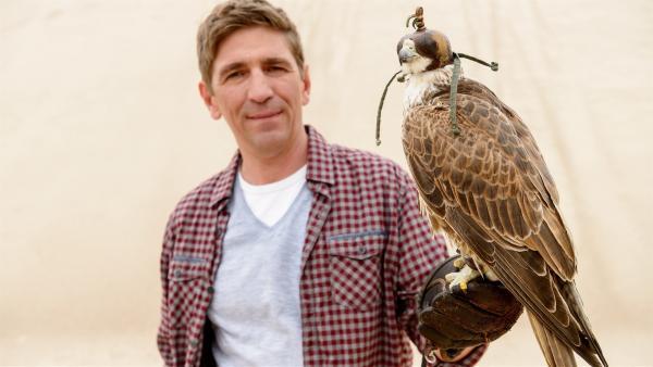 Fritz Fuchs (Guido Hammesfahr) hat den Falken angelockt. Aber ist das wirklich der gesuchte Greifvogel? | Rechte: ZDF/Antje Dittmann