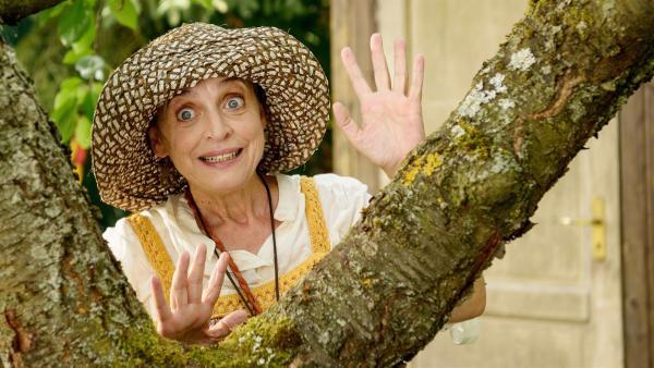 Punilla (Katharina Thalbach), eine angebliche Freundin des Nachbarn, geht in Fritz' Garten auf Eichhörnchen-Jagd. | Rechte: ZDF/Antje Dittmann