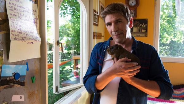 Fritz Fuchs (Guido Hammesfahr) nimmt Meerschweinchen Ira bei sich zur Pflege. Noch ahnt er nicht, auf welches Abenteuer er sich einlässt. | Rechte: ZDF/Zia Ziarno