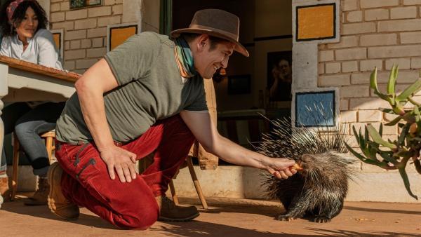 Kaum in Südafrika gelandet, hat Fritz Fuchs (Guido Hammesfahr) schon Freundschaft mit dem Stachelschwein Cookie geschlossen. Eines der vielen Tiere auf Kiras (Thandi Sebe) Farm.   Rechte: ZDF/Raquel Fernandes