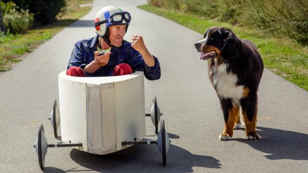 Testfahrt mit der selbstgebauten Seifenkiste. Wäre doch gelacht, wenn Fritz (Guido Hammesfahr), unterstützt von Hund Keks, nicht ein Wahnsinnsrennen hinlegen würde. | Rechte: ZDF/Andrea Hansen