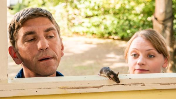 Kusine Charlie (Géraldine Raths, r.) hat das putzige Mäuschen mit Leckereien gefüttert. Und jetzt scheint sich die Hausmaus in Fritz Fuchs' (Guido Hammesfahr) Bauwagen sehr wohl zu fühlen. | Rechte: ZDF/Antje Dittmann