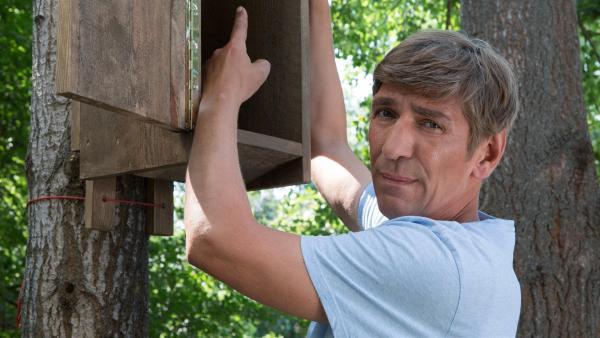 Fritz (Guido Hammesfahr) will als Umzugshelfer die Hornissen aus dem Büdchen in seinen eigenen Garten umsiedeln. | Rechte: ZDF/Zia Ziarno