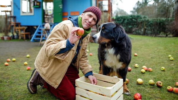 Fritz (Guido Hammesfahr) liebt seine Äpfel und muss diesen kostbaren Vorrat gemeinsam mit Keks beschützen. | Rechte: ZDF/Andrea Hansen Fotografie
