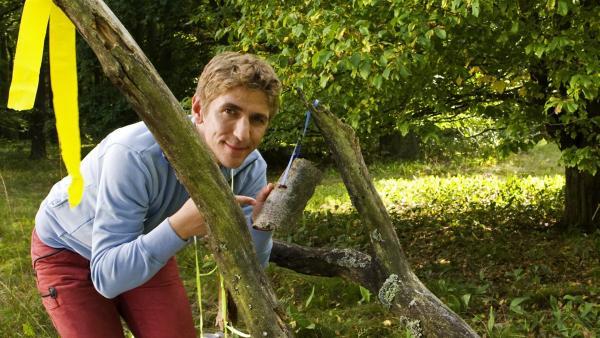 Fritz Fuchs (Guido Hammesfahr) legt die erste Aufgabe für die Schnitzeljagd aus: Welche Rinde gehört zu welchem Baum? | Rechte: ZDF/Antje Dittmann