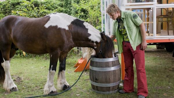 Und wie soll Fritz Fuchs (Guido Hammesfahr) das Pflegepferd nun trainieren? Lenny interessiert sich erstmal nur für die Regentonne.   Rechte: ZDF/Antje Dittmann