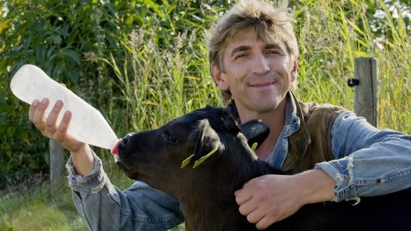 Fritz (Guido Hammesfahr) füttert die kleinen Kälbchen am liebsten. | Rechte: ZDF/Antje Dittmann