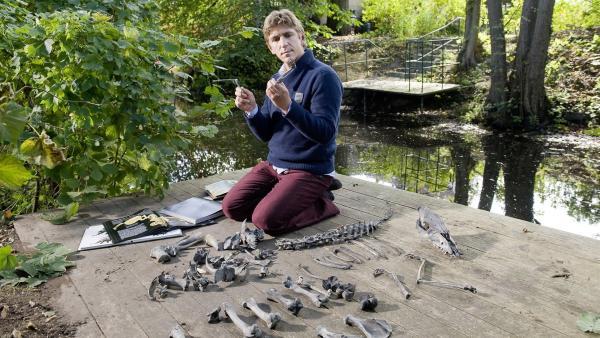 Fritz Fuchs (Guido Hammesfahr) ist einer Sensation auf der Spur - ein Mini-Dino in seinem Garten!   Rechte: ZDF/Antje Dittmann