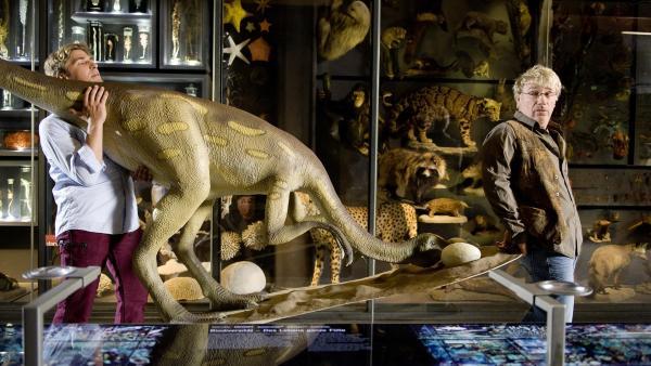 Der Dino soll ins Naturkundemuseum - und Fritz Fuchs (Guido Hammesfahr) hat seinem Freund Julius (Jörg Schüttauf) Hilfe versprochen.   Rechte: ZDF/Antje Dittmann