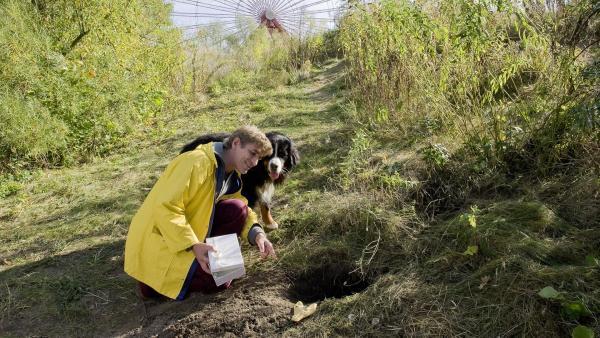 Nah bei der Stadt haben Fritz Fuchs (Guido Hammesfahr) und Keks einen Fuchsbau aufgestöbert. | Rechte: ZDF/Antje Dittmann