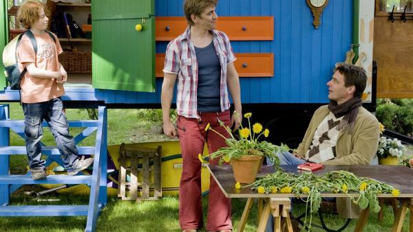 Jetzt wird's spannend: Fritz (Guido Hammesfahr) und Freddy (Lasse Westphal) haben etwas ganz Fantastisches bei den Löwenzahn-Pflanzen entdeckt. | Rechte: ZDF/Antje Dittmann
