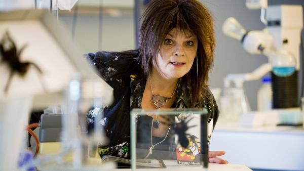 Prof. Dr. Splitgerber (Gayle Tufts) ist eine internationale Expertin für Spinnenforschung. | Rechte: ZDF/Antje Dittmann